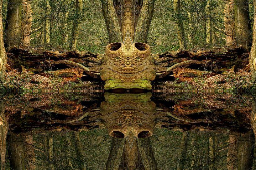 Baum im Wald von Peter Roder
