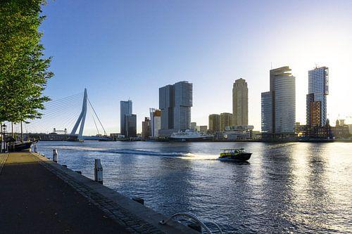 Rotterdam | Watertaxi en Skyline Wilhelminapier