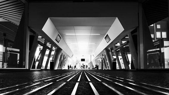 Station Lines van Martijn Kort