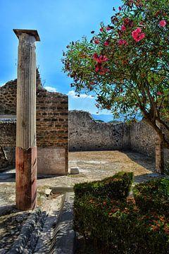 Ruine in Pompeji von Dennis Morshuis