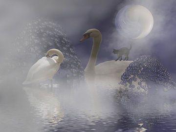 im Nebel van Isa Bild