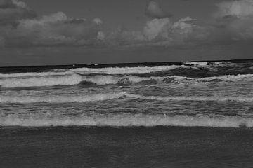 Brekende golven zwart/wit van