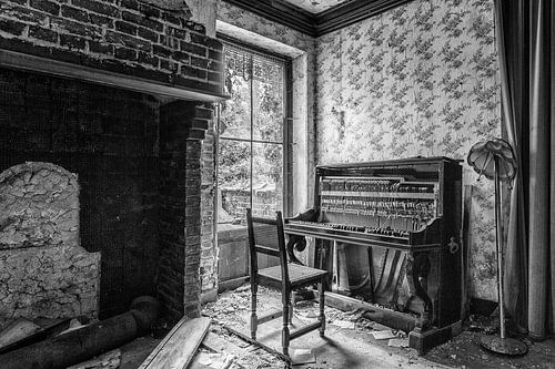 De muzikant is met onbekende bestemming vertrokken. van Cees Stalenberg