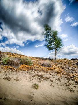 Aarde en lucht van Mark Bolijn