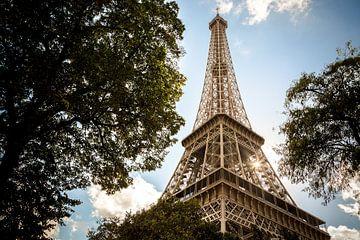 Eiffeltoren door de bomen van Sander van Mierlo