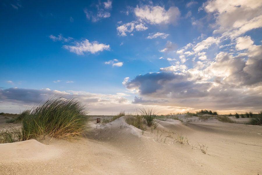 De duinen op Ameland