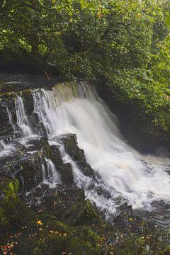 Wasserfälle, Irland von Lynn