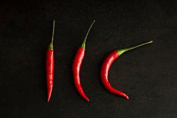 3 rote Paprika von Mister Moret Photography
