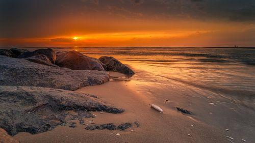 Gouden Sunset van