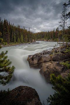Wilder Fluss von Leon Brouwer