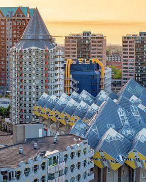 Blick vom Dach des Weißen Hauses in Rotterdam von Annette Roijaards
