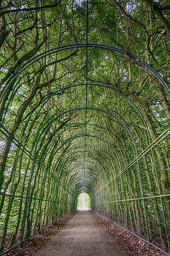 Grüner Tunnel von Mark Bolijn