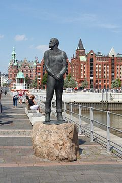 Störtebeker Monument, Internationaal Maritiem Museum, Speicherstadt, Hafencity, Hamburg van Torsten Krüger