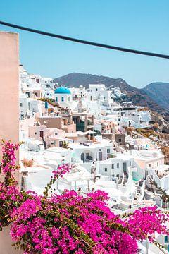 Santorini met een fleurige voorgrond van Joep Brocker