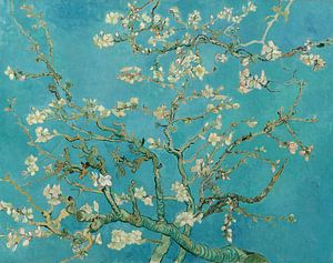 Mandelbaum in Blüte - Vincent van Gogh