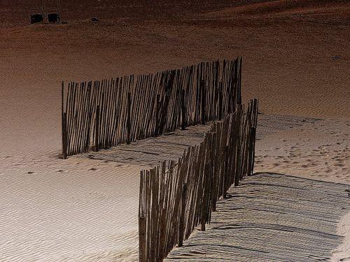 Zand,schaduw en riet. van