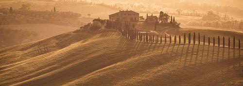 Panorama van een heuvel landschap in Toscane met warm avondlicht op een zomerse dag