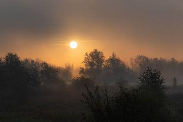 magischer Sonnenaufgang von Tania Perneel
