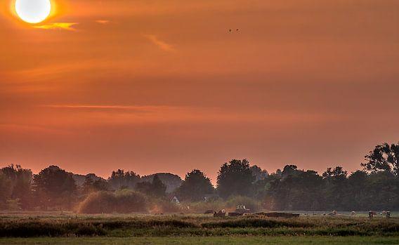 Red dust van Robin Pics (verliefd op Utrecht)