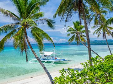 Palmen, türkisfarbenes Meer und Strand in Siquijor, die Philippinen von Teun Janssen