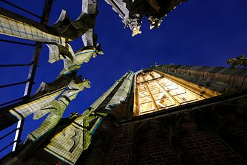 Lantaarn Domtoren van Utrecht von Donker Utrecht