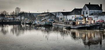 Belcrum haven van Cees van Miert