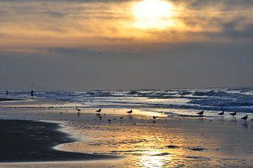 Zonsondergang Noorzeekust van Fred van den Brink