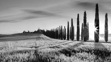 Sonnenaufgang Poggio Covili, Toskana von Henk Meijer Photography