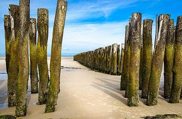 Meerblick, Opalküste, Frankreich von Rietje Bulthuis