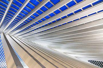 Blauw staal Liege-Guillemins sur Dennis van de Water