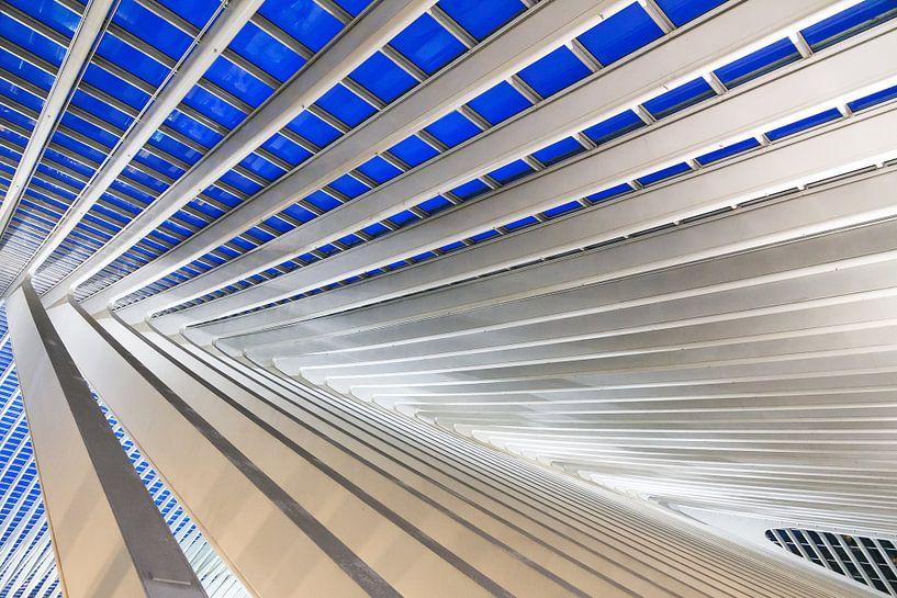 Blauw staal Liege-Guillemins van Dennis van de Water