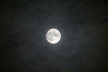 Volle maan die door de wolken aan de donkere nachtelijke hemel schijnt van Sjoerd van der Wal