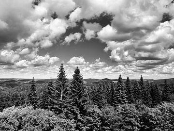 Die Eifel vom Aussichtspunkt Dietzenley 1 schwarzweiß von Jörg Hausmann