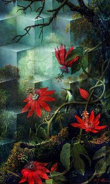 Kolibrie en passiebloemen van Rudy en Gisela Schlechter