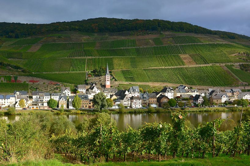 Zell-Merl on Moselle van Gisela Scheffbuch