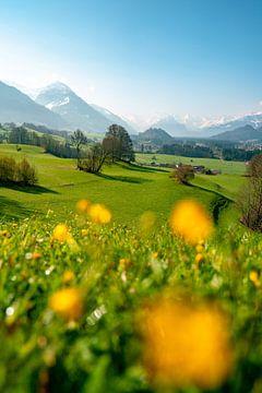 lenteachtig uitzicht vanuit de Malerwinkel in de Allgäu naar de Allgäuer Alpen van Leo Schindzielorz