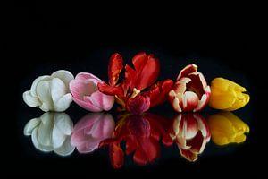 Tulpen boeket met reflectie 1 van Doris van Meggelen