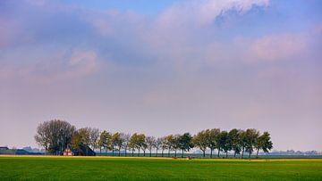 Landschaft in der Provinz Groningen, Niederlande