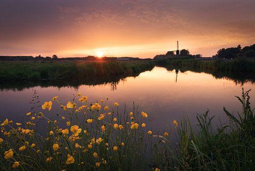 Beautiful Noordwijk van