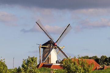 Alte Mühle. Typisch Niederländisch von Anjella Buckens