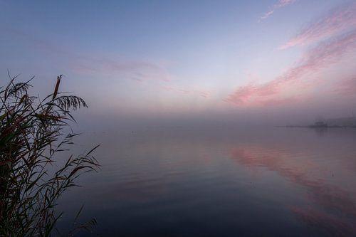 Vroege ochtend aan het water