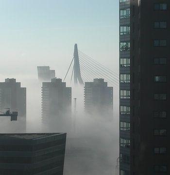 Rotterdam von Coen de Haan