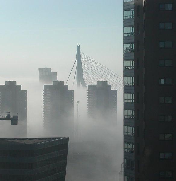 Rotterdam van Coen de Haan