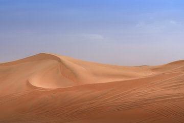 Empty Desert van