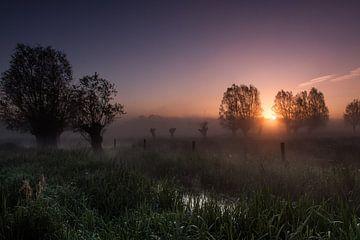 Zonsopgang in de mist van Maurice Hertog