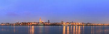 Antwerpen panorama vanaf de linkeroever van de Schelde