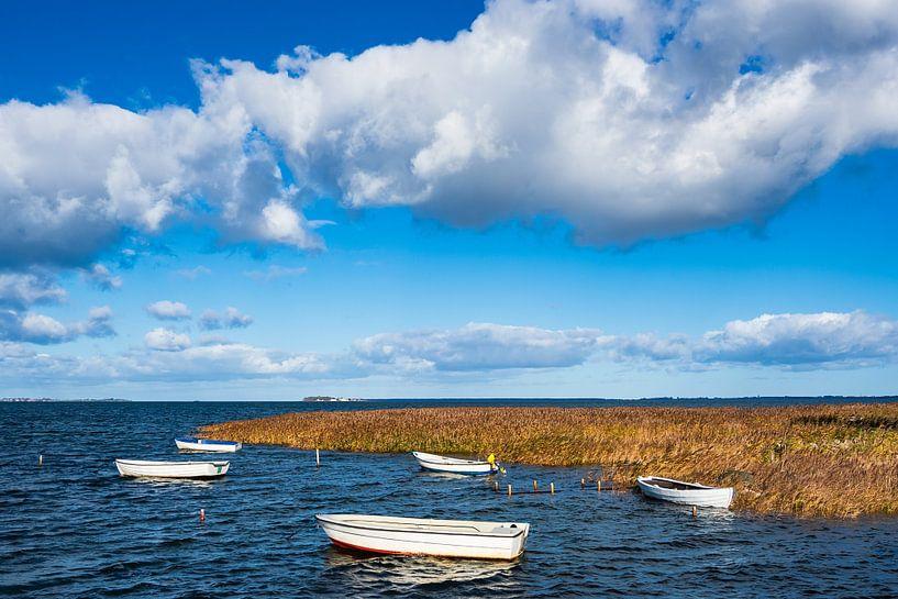 Baltic Sea coast on the island Moen in Denmark sur Rico Ködder