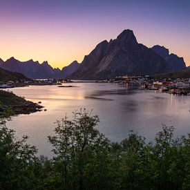 Reine, Lofoten, Noorwegen van Jelle Dobma