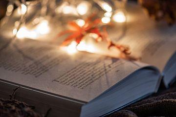 laten we een boek lezen op een koude herfstdag van Tania Perneel