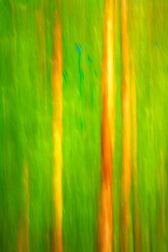 straws van Bernd Hoyen